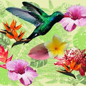 Tropical_motif