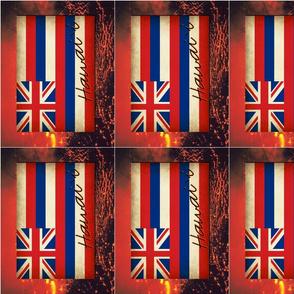 Hawai`ian Flag with Lava