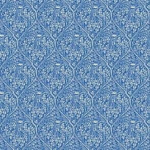 Blue Oak
