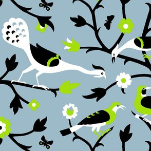 Persian Birds 613g