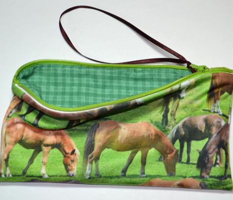 Ponies at Pasture