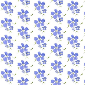 03 Blue Floral Joy