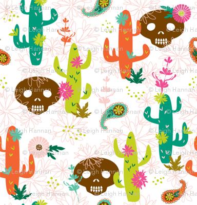 summer desert