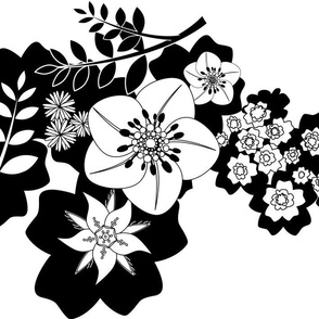 black & white hedgerow flowers