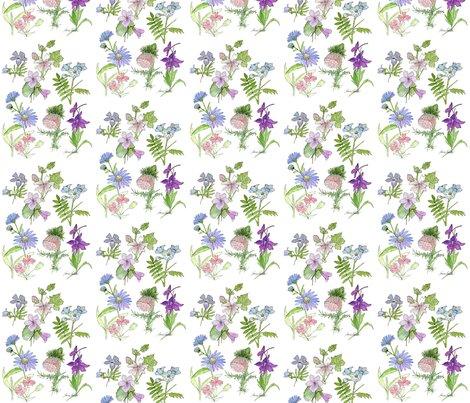 Rrrrfaa_nature_art_wildflower_study_fabric_shop_preview