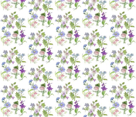Botanical Wildflowers fabric by betweentheweeds on Spoonflower - custom fabric