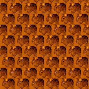 Bunny Golden