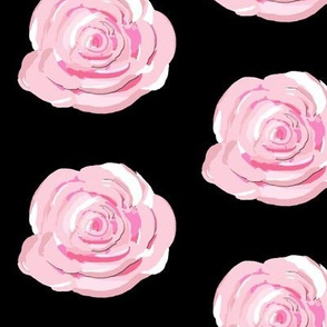 Pink Cabbage Roses on black background