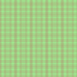 MINT CHOCOLATE MINI PLAID