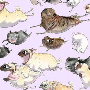"4"" pugs on the run - lavender"