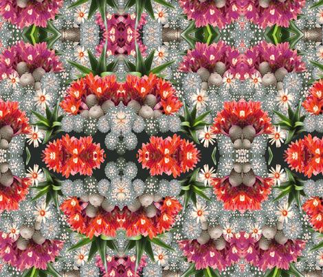 cacti mix 4 fabric by kociara on Spoonflower - custom fabric