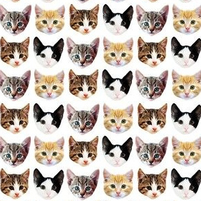 Cat/Kittens Pattern