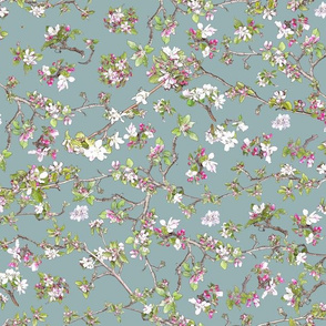 Apple Blossom on blue 98b2b3