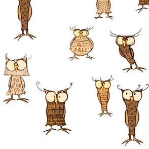Owl shapes and sizes, scatter