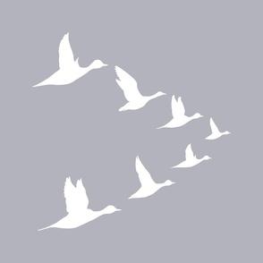 Flying Duck Group White