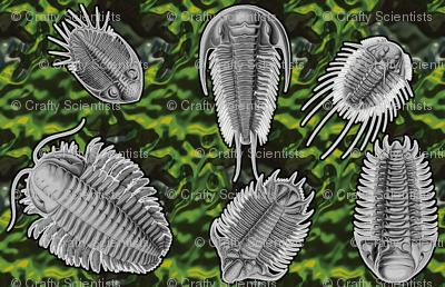 trilobites green2