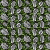 Rrrrtrilobites_green2_shop_thumb