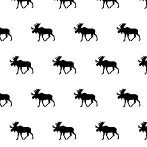Moose // B&W