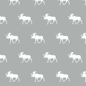 Moose // grey