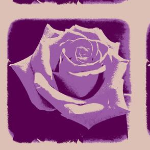 rose_2-ed-ch