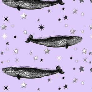 Vintage Star Whale, Black & White Stars on Lavender
