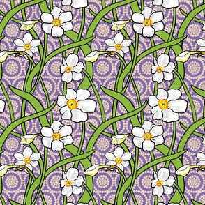 White Narcissus on Purple