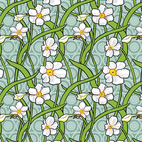 White Narcissus on Teal