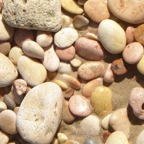 A Walk on the Beach #6