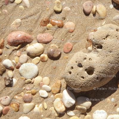 A Walk on the Beach #7