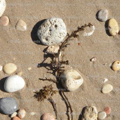 A Walk on the Beach #10