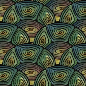 Artwork - Turtle Shell Scallop