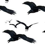 Rflying_ravens_shop_thumb