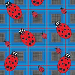 Lady_Bug_Plaid