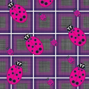 Lady_Bug_Purple_Plaid
