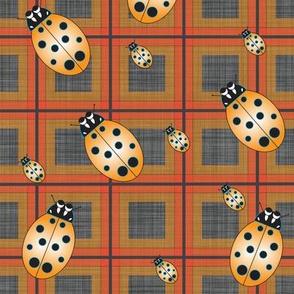 Lady_Bug_Orange_Plaid