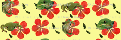 Frogs and Hibiscus2