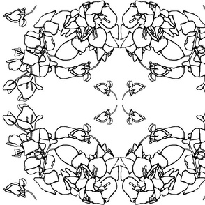 Coloring Book Bougainville Wreath