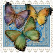 T0005 Marcia Butterflies