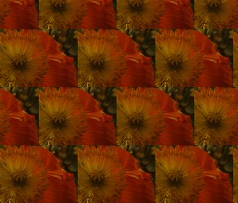 Poppy fabric by jennck on Spoonflower - custom fabric