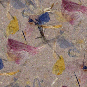 Wildflowers pressed in handmade paper