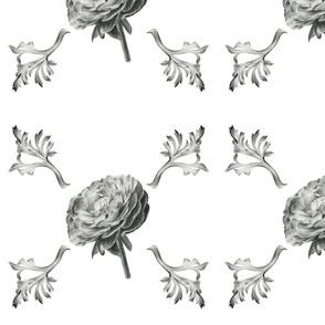 Ranunculus_basic_wallpaper_copy