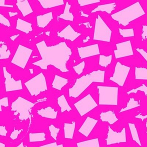United States Scatter (Pink)