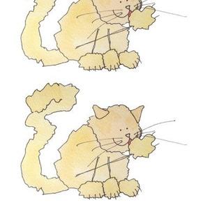 Fluffy Yellow Cat!
