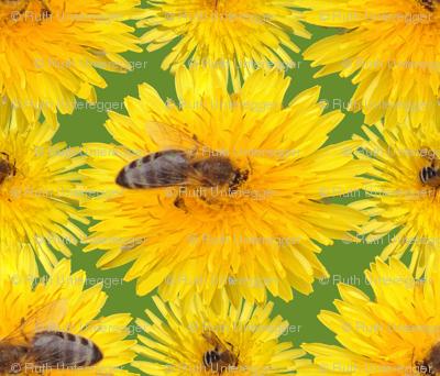 Important pollinators give us honey