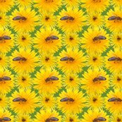 Rrdandelion_with_bees_1a_shop_thumb