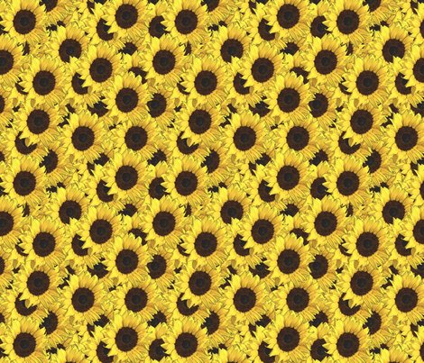 Sunflowers_are_us_shop_preview