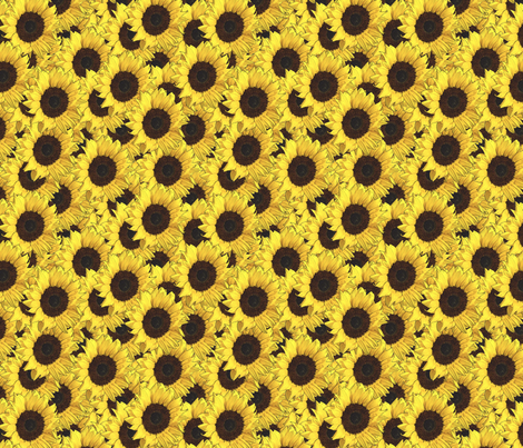 Sunflowers are us fabric by linsart on Spoonflower - custom fabric