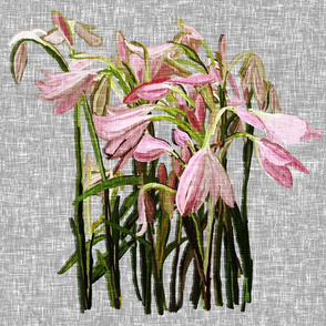 Feature Easter lilies on gray canvas by Su_G