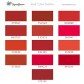Sf-colorswatch-cs-red-2016_shop_thumb
