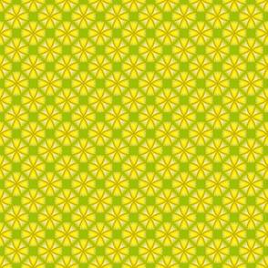 26apr14#2  v2    -lemon on lime